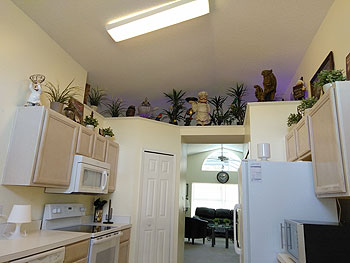 Kitchen wth Rain Forest with decor lighting