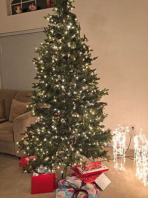 Christmas at Seasons