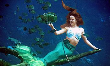 Weeki Wachee mermaid